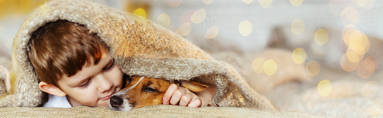 Young boy and dog under blanket
